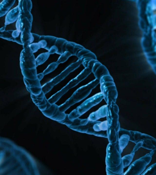 生物資訊Bioinformatics